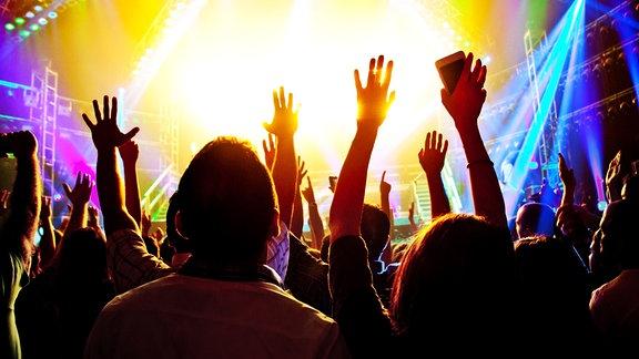 Publikum bei einem Rockkonzert