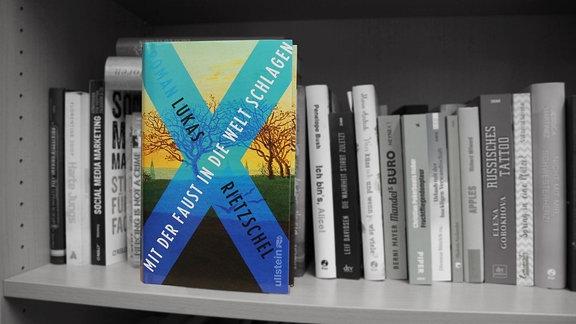 """""""Mit der Faust in die Welt schlagen"""", Roman von Lukas Rietzschel, erschienen bei Ullstein Buchverlage"""